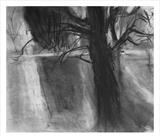 Brightening Up by Joanna Brendon, Drawing, Charcoal on Paper